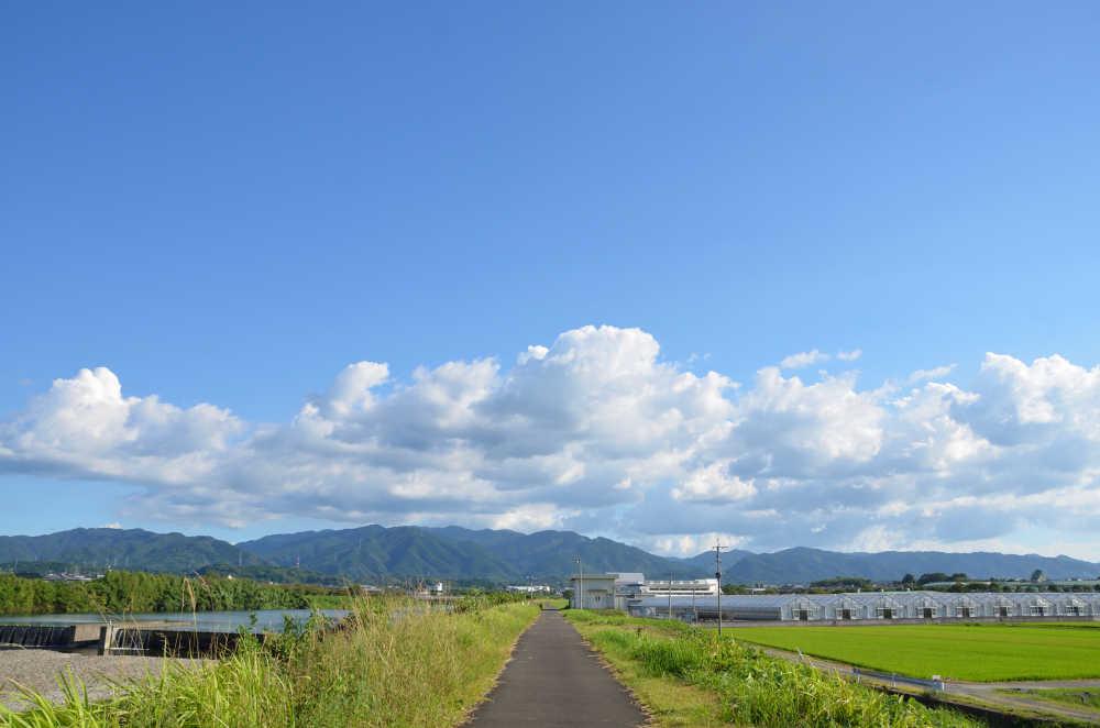 米ノ津川の堤防